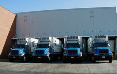A team of our trucks posing for a photo